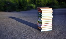 12 different books Stock Photography