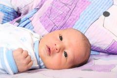 12 jours nouveau-nés  Photos libres de droits