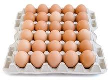 12 nya ägg Fotografering för Bildbyråer