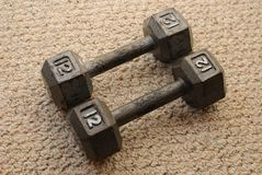 12 Pound Dumb Bells. At home on berber carpet Stock Image