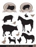12 silhouetten van dieren Stock Foto