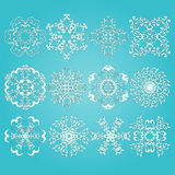 12 Snowflakes Royalty Free Stock Photo