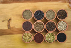 12 spices Stock Photography