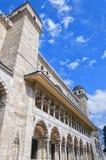 12 suleiman的清真寺 免版税库存图片