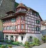 12 trevliga schweizare för herrgård Arkivbilder