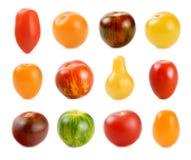 12 verschiedene Sortierungen der Tomaten über Weiß Lizenzfreies Stockbild