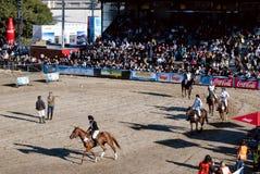 124 ? Ausstellung-Viehbestand und landwirtschaftliches Argentinien Lizenzfreie Stockfotografie