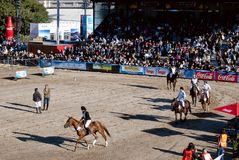 124 � Exposition Livestock and Rural Argentina Royalty Free Stock Photography