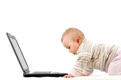 13个婴孩愉快的膝上型计算机 免版税库存图片