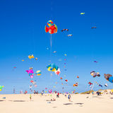 13个节日费埃特文图拉岛风筝11月 图库摄影