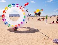 13个节日费埃特文图拉岛风筝11月 免版税图库摄影