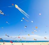 13个节日费埃特文图拉岛风筝11月 库存照片