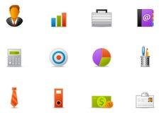 13企业图标pixio集 免版税图库摄影
