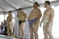 13位sumo摔跤手 图库摄影