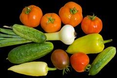 13新鲜蔬菜 免版税库存照片