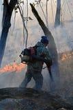 13火森林抑制 库存图片