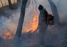 13火森林抑制 库存照片
