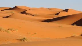 13片沙漠摩洛哥人 免版税库存照片