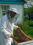 13蜂农 免版税库存图片