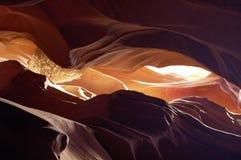 13 картины природы Стоковое Фото