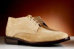 13 роскошных ботинка человека Стоковое Изображение RF