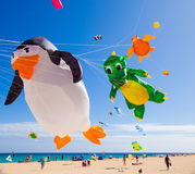 13 2011年节日费埃特文图拉岛风筝11月 库存照片