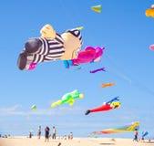 13 2011 festivalfuerteventura drake november Fotografering för Bildbyråer