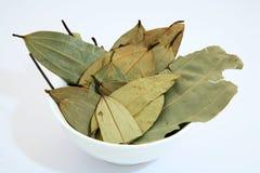13 indiska kryddor Arkivbilder