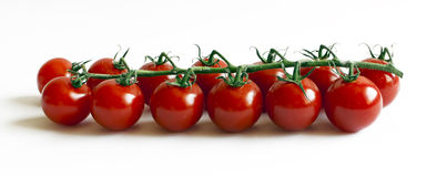 13 pomodori su una filiale Immagini Stock