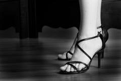 13 skor Fotografering för Bildbyråer