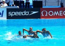 13fina 2009年冠军世界 免版税图库摄影