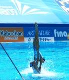13FINA World Championship  2009 Stock Image