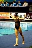 14个冠军fina上海世界 免版税库存照片