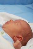 14婴孩 免版税库存照片