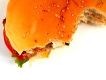 14汉堡包 库存图片