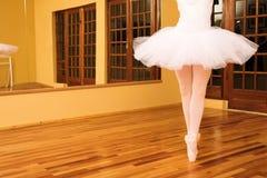 14芭蕾舞女演员 库存图片