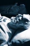14-ая могила norfolk duke Стоковые Фото