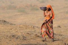 14 2009 верблюдов справедливый ноябрь puskar Стоковое фото RF