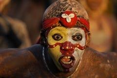 14 2010个每年狂欢节s 2月法属圭亚那 库存照片