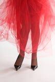 14 glamourben Arkivfoton