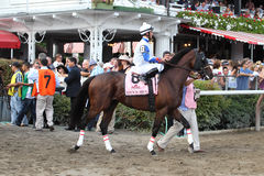 143rd Running of the Travers Stakes stock image