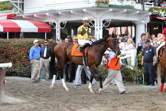 143rd Running of the Travers Stakes royalty free stock image