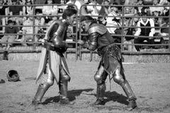 15个争斗faire骑士乐趣新生 免版税库存图片