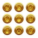 15个按钮金图标设置了万维网 库存图片