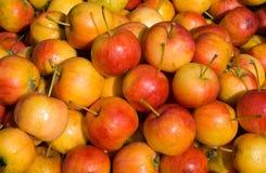 15个苹果 免版税库存图片