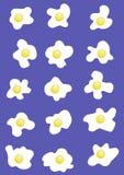 15个鸡蛋 图库摄影