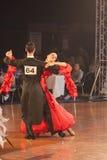 15对比拉罗斯夫妇舞蹈1月米斯克标准 免版税库存照片