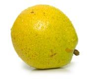 15果子 免版税库存照片