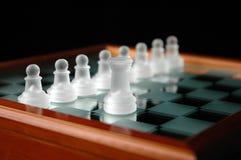 15 κομμάτια σκακιού Στοκ Εικόνες