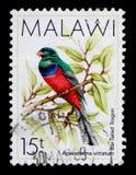 15 выставок напечатанных Малави штемпелюют tambala Стоковые Фото